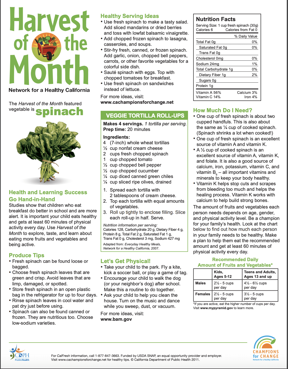 Harvest of the Month - Spinach